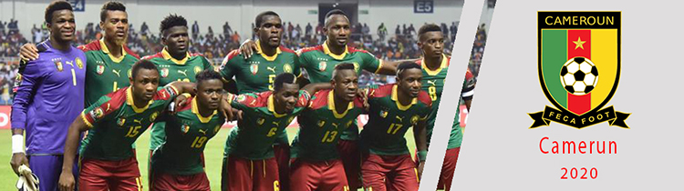 Camisetas del Camerun baratas